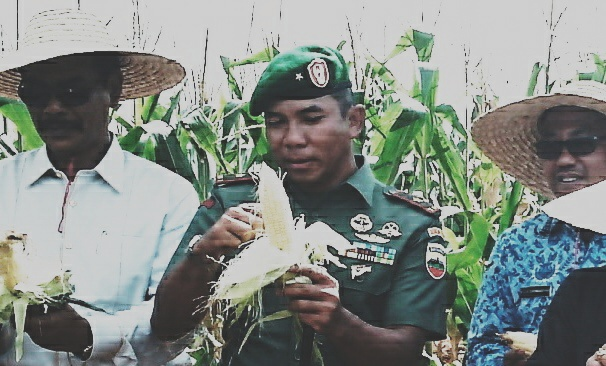Danrem 033 WP, Brigjend Eko saat panen jagung