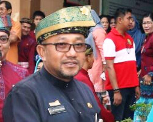 Sekretaris DPD PDIP Provinsi Kepri, Lis Darmansyah