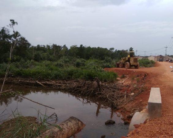 Hutan Mangrove yang diduga dirusak oleh pihak ElLang Indonesia Regency saat membangun akses jalan ke perumahan di jalan Merpati Km 11 Kelurahan Batu IX, Tanjungpinang