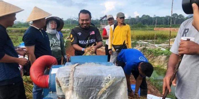 Ketua KNPI Lingga, Saparuddin Saat Acara Panen Padi di Desa Panggak Darat